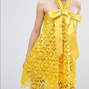 NWT ASOS Salon A-line Lace Dress